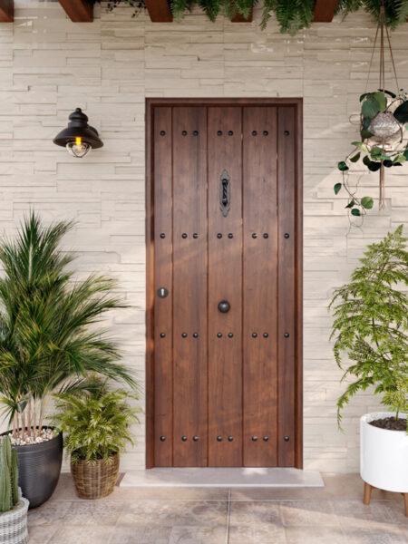 Puerta de exterior 02